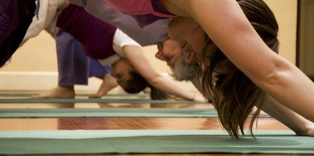 Downward-Dog-in-Ashtanga-C.1.jpg