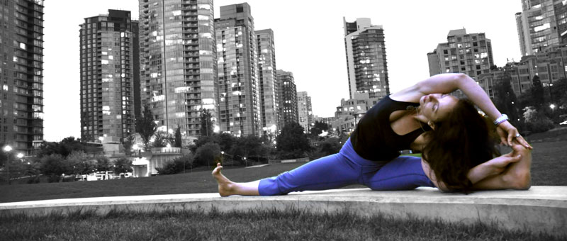 Vinyasa Flow Workshop  Dec. 14 - 17:00