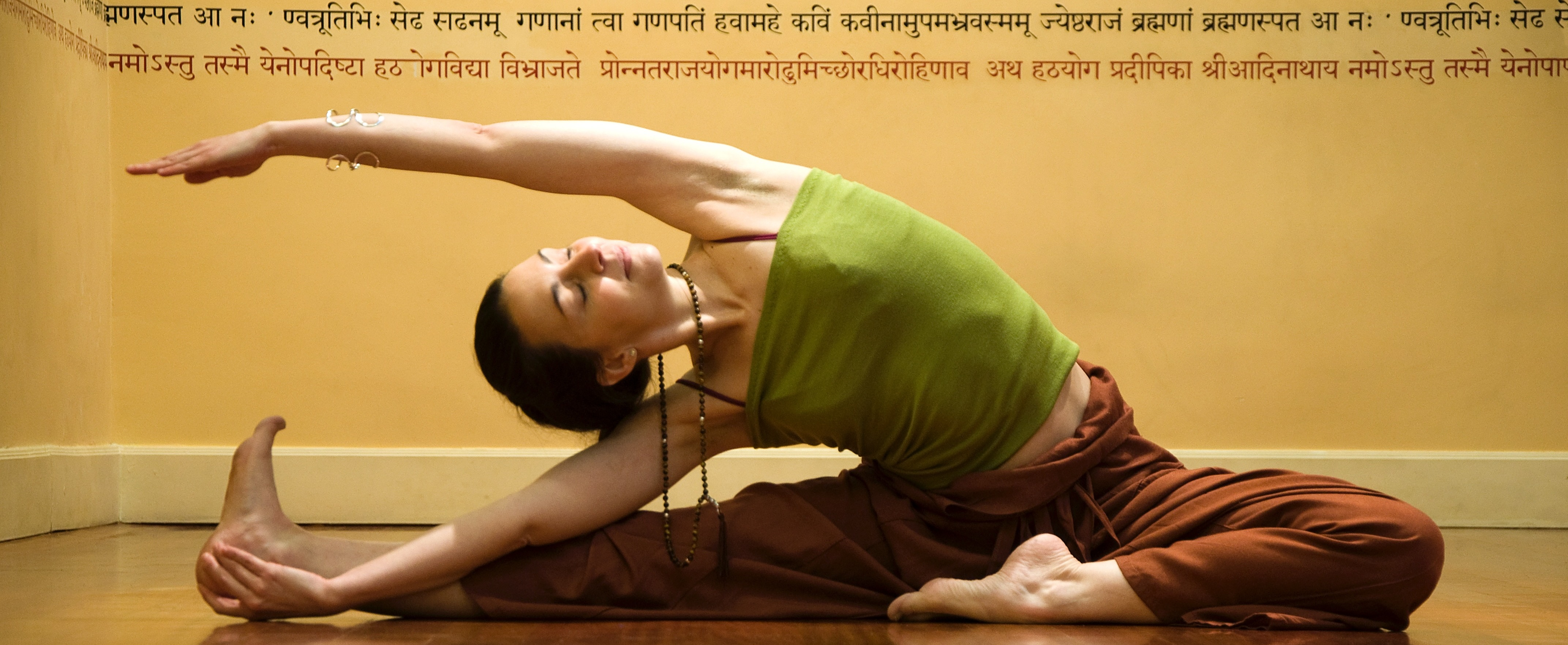 Vinyasa Flow Day ...  Dec.14 - 17:00