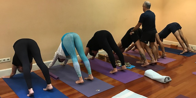 Iyengar Yoga Intensive - September 28 - 29